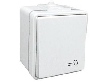 WTS - Einfach-Taster (Impulstaster) AP , mit Schlüsselsymbol -IP 44